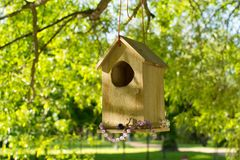 A house for birds summer Royalty Free Stock Photos