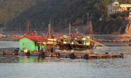 House boats in Ha Long Bay near Cat Ba island, Vietnam Stock Photos