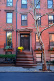 House in Brooklyn. Facade view of tall house with tree in foreground, Brooklyn Heights, New York city, U.S.A Royalty Free Stock Image