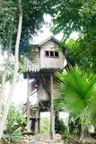 House built on a tree. Royalty Free Stock Photography