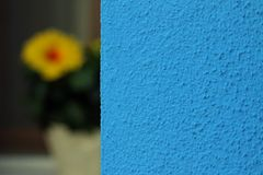 House of Burano with blue wall and a flower Stock Photos