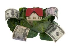 House in cabbage on white Royalty Free Stock Photos