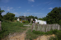 House of the campesinos (Cuba). A little house of the cuban campesinos (cuban farmers Stock Images
