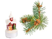 House candle and pine-tree Royalty Free Stock Images