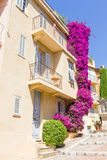 House in Cannes, south of France Stock Photos