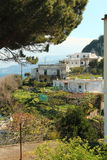 House in Capri, Italy. House on a hill in Capri, Italy Stock Image