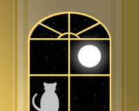 View on a cat in front of a window as an Illustration Stock Photography