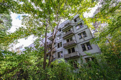 House in Chernobyl Zone Royalty Free Stock Photos