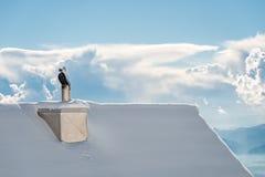 House Chimney, winterday Stock Photography