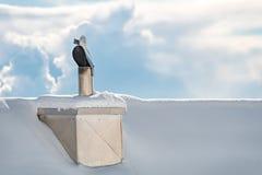 House Chimney, winterday Stock Photo