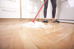House cleaning Royalty Free Stock Photo