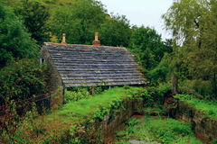 House. Cottage, a lot of greenery, trees, bushes, grass, amazing view, dam water, wall, river, view gives the impression for peace and quiet Stock Image