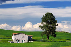 House in Countryside royalty free stock photos