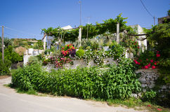 House covered by plants and flowers, Greece Royalty Free Stock Images