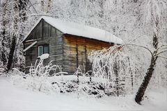 House covered by snow stock image