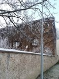 House covered by wild wine and frost Royalty Free Stock Photo