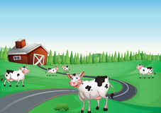 House and cow. Illustration of a house and a cow in a beautiful nature Stock Image