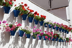House decorated with flowerpots Royalty Free Stock Image