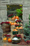 House decorated with pumpkins Stock Images