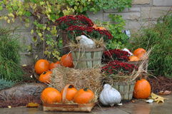 House decorated with pumpkins Royalty Free Stock Photos