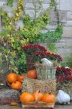 House decorated with pumpkins and fall leaves for Thanksgiving d royalty free stock photos