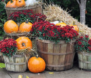 House decorated with pumpkins Royalty Free Stock Images