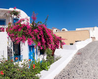 House decorated with red flowers in Oia, Santorini, Greece Royalty Free Stock Photo