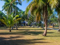 House deep in the palm grove. Koh Phangan Thailand stock image