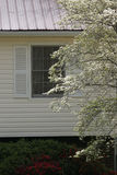 House with Dogwood Stock Photos