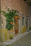 House doors and flower, night view Stock Photos