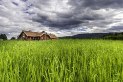 House on Dramatic Field Royalty Free Stock Image
