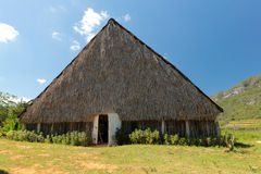 House for drying the tobacco Royalty Free Stock Photography