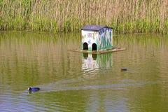 House for ducks Stock Photos