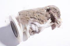 House dust Stock Photo