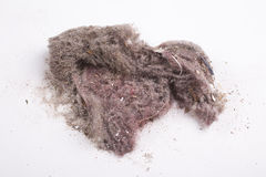 House dust Royalty Free Stock Photography
