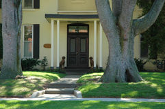 House Entrance. To cream stucco home with pathway, large trees, pillars and dog statues stock photography