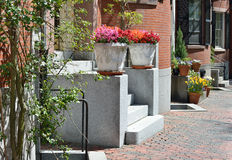 House Entrance Detail with Elegant Planters Stock Images