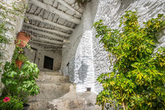 House entrance with plantpots in Capileira Stock Photos