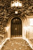 House entrance - sepia. Image of old, decorated house entrance Stock Images