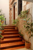 House entrance with wooden stairs and flower pots royalty free stock photography