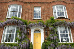 House façade. Typical victorian style house frontage with wisteria growing on it stock image