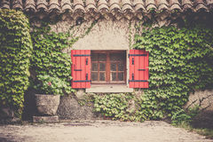 House facade with window in Southern France. House facade with window and wild grapes plants in Southern France. Horizontal filtered shot Stock Photo