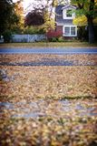 House in fall. A neighborhood house in the fall with leaves in the front Stock Photography