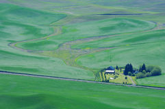 A house among farmlands royalty free stock images