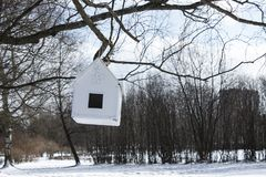 House-feeder hanging from a tre. E in a park in spring Stock Photos