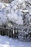 House fence in winter Royalty Free Stock Photography