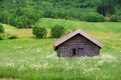 House in the field. Stock Photos
