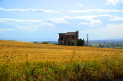 House in the field. This shot was taken on a tarvel from the bus Royalty Free Stock Image