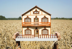 House in a field sunny day Stock Photo