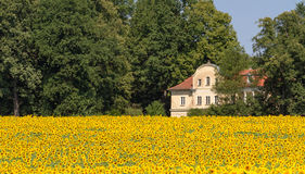 House in the Fields Royalty Free Stock Photography